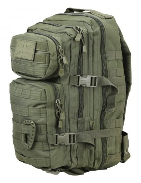Small Molle Assault Pack 28ltr Rucksack